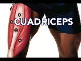 Tendinistis del cuádriceps: lesiones comunes